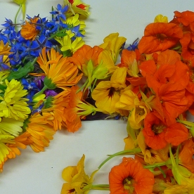 Kapuzinerkresse-, Ringelblumen- und Borretsch-Blüten