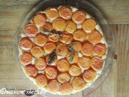 Aprikosen Tarte-Tatin